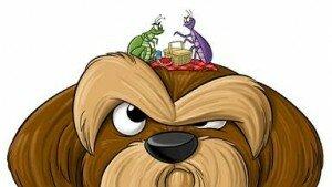 Собачьи паразиты и борьба с ними